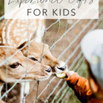 boy feeding deer through fence with title text overlay best experience gifts for kids